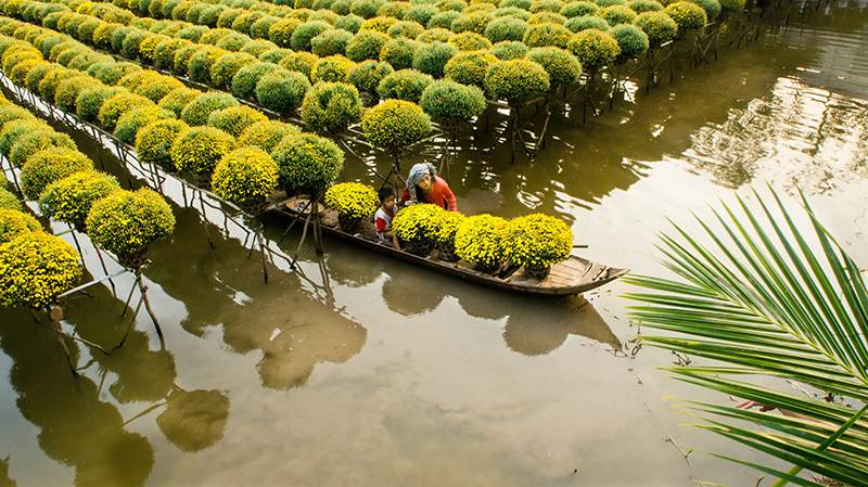 TOURS IN THE MEKONG DELTA (SAI GON - CAN THO) 2 DAYS